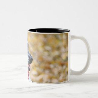Cão do outono caneca de café em dois tons