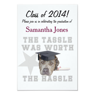 Cão do pitbull da graduação convite 8.89 x 12.7cm