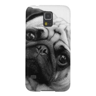 Cão do Pug Capinhas Galaxy S5