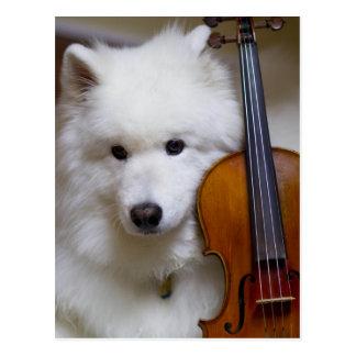 Cão do Samoyed com cartão do violino