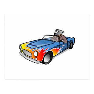 Cão dos desenhos animados que conduz um carro cartões postais