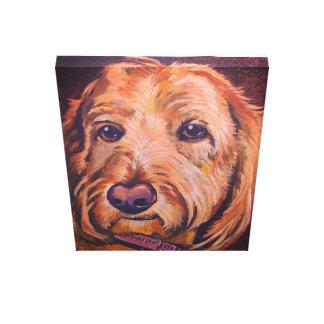 cão dourado do doodle em canvas