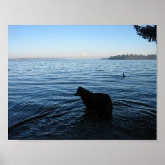 Cão e Monte Rainier de Penrose Pôster