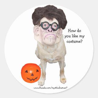 Cão engraçado com máscara humana adesivo