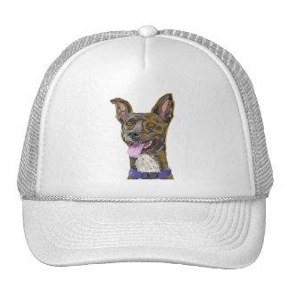 Cão esboçado colorido de vista engraçado com boné