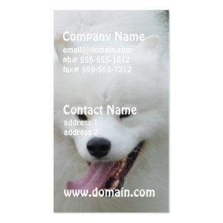 Cão Eskimo americano bonito Cartoes De Visita