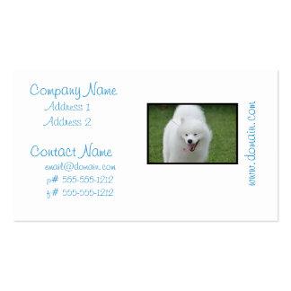 Cão Eskimo americano bonito Cartao De Visita