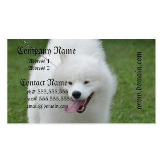 Cão Eskimo americano bonito Cartões De Visitas