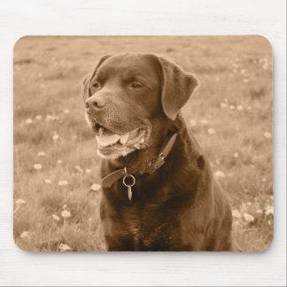 Cão Mousemat de Labrador Mouse Pad