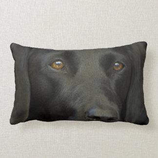 Cão preto de Labrador Travesseiro De Decoração