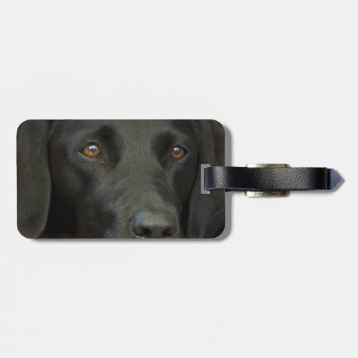 Cão preto de Labrador Tags De Bagagens