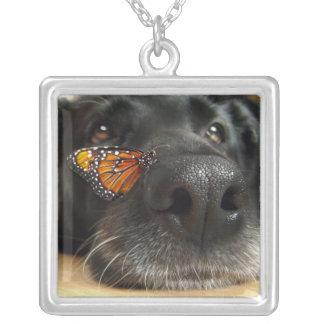 Cão preto do laboratório com borboleta colar com pendente quadrado