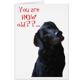 Cão preto do laboratório que derruba a cabeça que cartão comemorativo