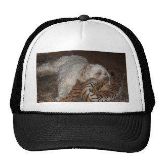 Cão que relaxa em cama listrada do tigre bone