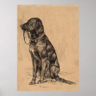 Cão só que guardara sua própria trela, tinta da pôster