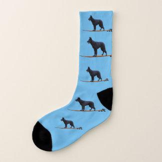 Cão surfando - grandes meias do pastor preto