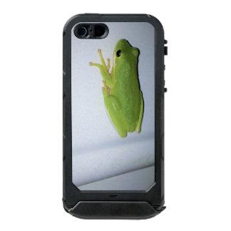 Capa À Prova D'água Para iPhone SE/5/5s Sapo de árvore verde