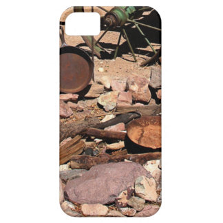 Capa Barely There Para iPhone 5 2010-06-26 C Las Vegas (189)