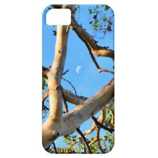 CAPA BARELY THERE PARA iPhone 5 ÁRVORE DE GOMA AZUL QUEENSLAND AUSTRÁLIA