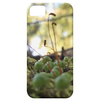 Capa Barely There Para iPhone 5 Benevolência Mossy