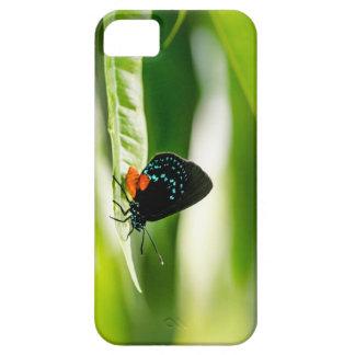 Capa Barely There Para iPhone 5 Borboleta por Erina Moriarty