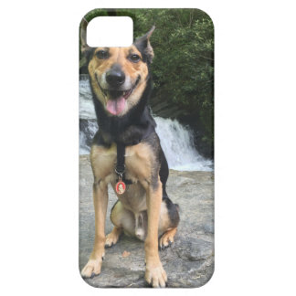 Capa Barely There Para iPhone 5 Cão de sorriso na rocha