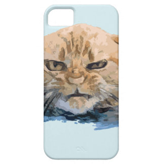 CAPA BARELY THERE PARA iPhone 5 CAT 10