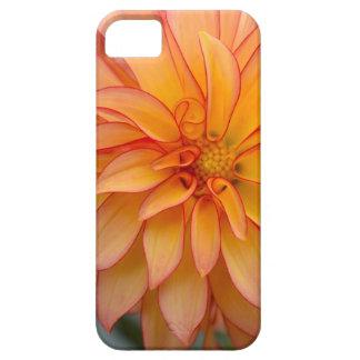 Capa Barely There Para iPhone 5 Cheio da glória