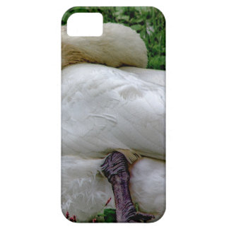 Capa Barely There Para iPhone 5 Cisne 1