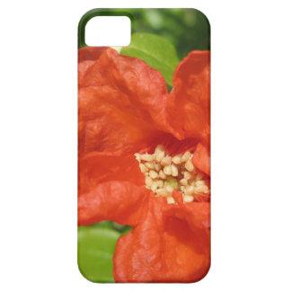 Capa Barely There Para iPhone 5 Close up da flor vermelha da romã