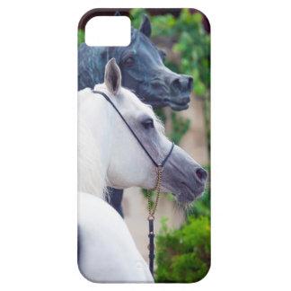 Capa Barely There Para iPhone 5 coleção do cavalo. branco árabe