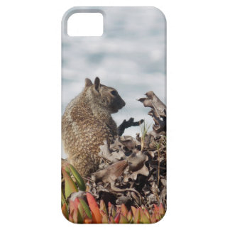 Capa Barely There Para iPhone 5 Esquilo pequeno