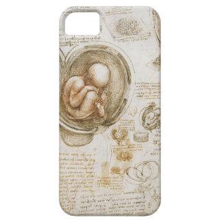 Capa Barely There Para iPhone 5 Estudos de Leonardo da Vinci do feto no ventre