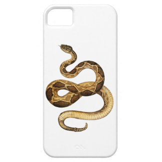 Capa Barely There Para iPhone 5 Expressões Slithering