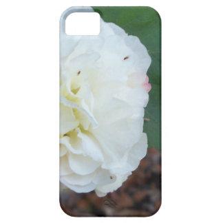 Capa Barely There Para iPhone 5 flor branca dos mutabilis do hibiscus