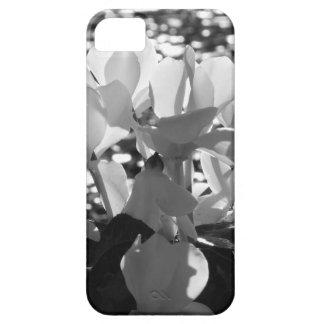 Capa Barely There Para iPhone 5 Flores brancas do cyclamen de Backlits no fundo