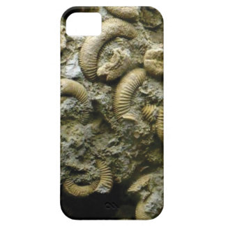 Capa Barely There Para iPhone 5 fósseis encaixados dos caracóis