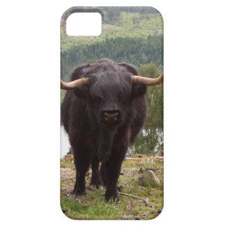 Capa Barely There Para iPhone 5 Gado preto das montanhas, Scotland