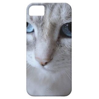 Capa Barely There Para iPhone 5 Gato de Kisa dos olhos azuis