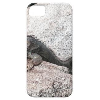 Capa Barely There Para iPhone 5 Iguana selvagem