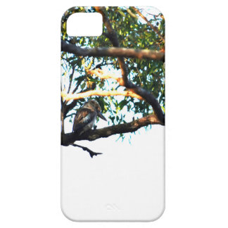 CAPA BARELY THERE PARA iPhone 5 KOOKABURRA QUEENSLAND RURAL AUSTRÁLIA