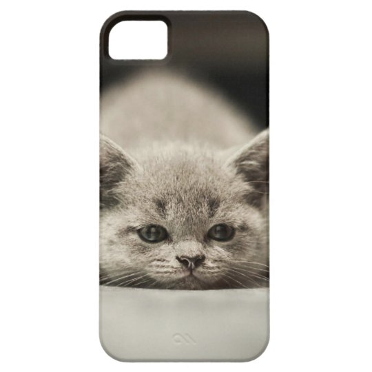 Capa Barely There Para iPhone 5 Lazy cat theme case