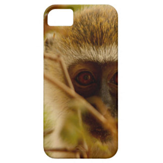 Capa Barely There Para iPhone 5 Macaco insolente