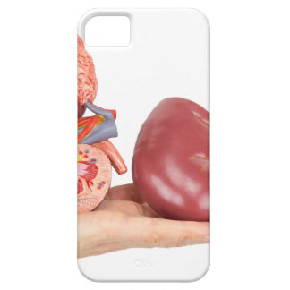 Capa Barely There Para iPhone 5 Mão lisa que mostra o rim humano modelo