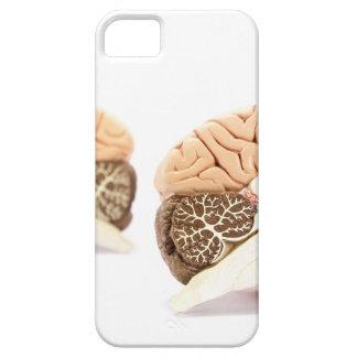 Capa Barely There Para iPhone 5 Modelo dos cérebros humanos isolado no fundo