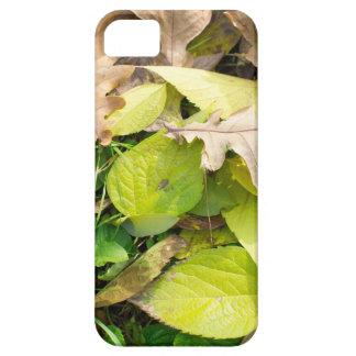 Capa Barely There Para iPhone 5 Opinião do Fim-acima nas folhas de outono caídas