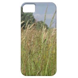 Capa Barely There Para iPhone 5 Paisagem do verão do campo selvagem no campo