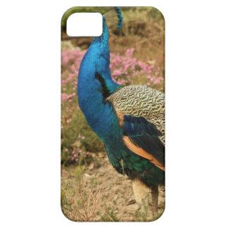 Capa Barely There Para iPhone 5 Pavão do verde azul e da laranja