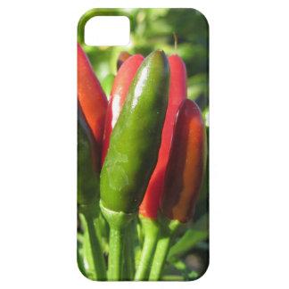 Capa Barely There Para iPhone 5 Pimentas vermelhas e verdes que penduram na planta