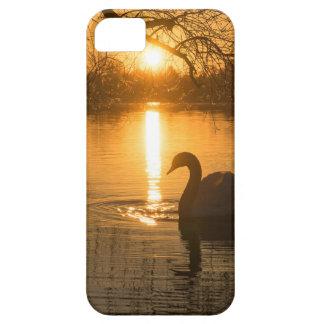 Capa Barely There Para iPhone 5 Por do sol com cisne